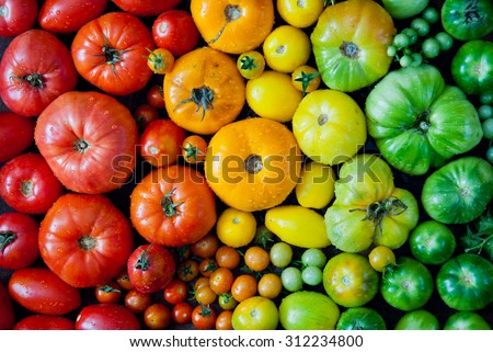 Fresh heirloom tomatoes background, organic produce at a Farmer's market. Tomatoes rainbow. - stock photo