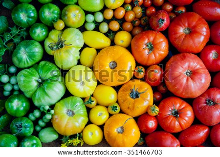 Fresh heirloom tomatoes background, organic produce at a Farmer\'s market. Tomatoes rainbow.