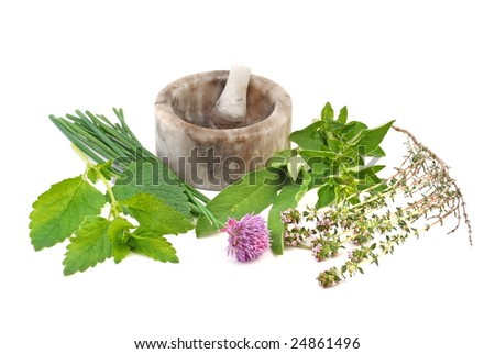 Fresh herb selection of  thyme, sage, oregano, chive and lemon balm with mortar to the rear, on white background.