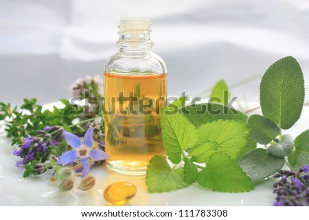 Fresh herbs and oil. Natural medicine