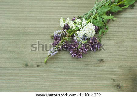 fresh herbs and spice plants on wooden