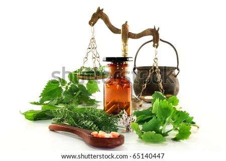 fresh herbs and spices on a white background