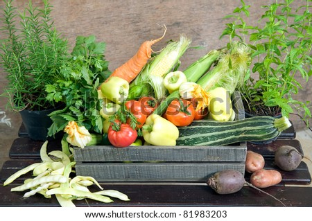 Fresh herbs and vegetables in wooden crate - stock photo