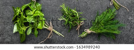 Fresh herbs, bunches of freshly harvested green herb from the garden on dark background