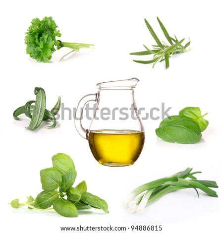Fresh herbs collection over white