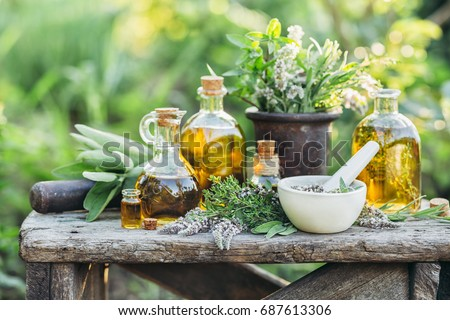 Fresh herbs from the garden and the different types of oils for massage and aromatherapy. - Shutterstock ID 687613306