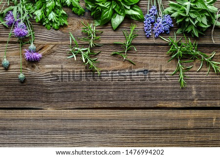 Fresh herbs from the garden. Rosemary, mint, lavender, parsley and basil herb, background with copy space. #1476994202