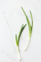 Fresh herbs: Green onion isolated on the white background. Fresh Scallions. top view. cooking. close up of green aromatic herb for cooking. Chinese chive