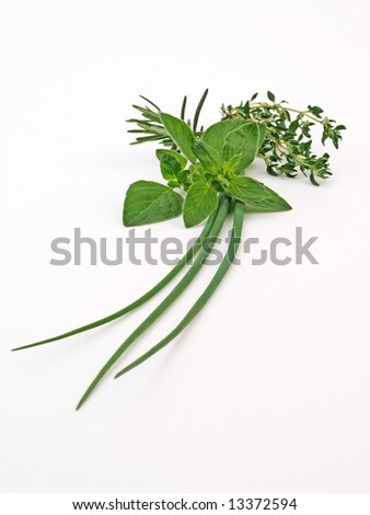fresh herbs, isolated on white.