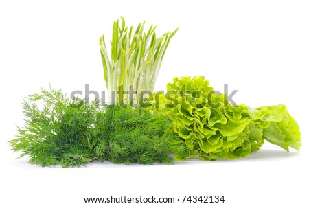 Fresh herbs isolated on white