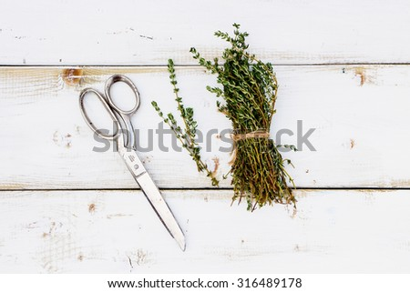 Fresh herbs over wood. Bunch of thyme on white wooden background. Cooking concept.