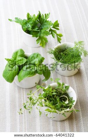 Fresh herbs, still life.