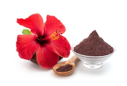 Fresh hibiscus flower and powder isolated on white background.