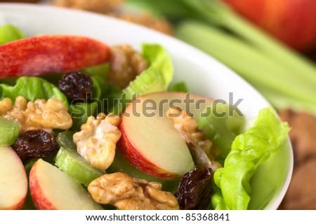 Fresh home-made delicious Waldorf Salad consisting of lettuce, apple, celery, walnuts, raisins and mayonnaise (Selective Focus, Focus one third into the salad)