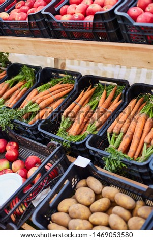 Fresh homegrown carrots and potatoes, plant based food, local food, close up.