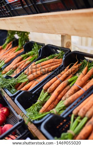 Fresh homegrown carrots, plant based food, local food, close up.