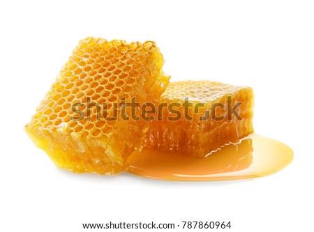 Fresh honeycombs on white background