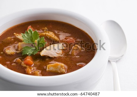 Fresh hot chicken stew in a bowl close up