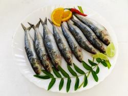 Fresh Indian oil sardine (Sardinella longiceps) Isolated on White Background