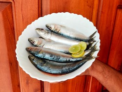 Fresh Indian oil sardine (Sardinella longiceps) Isolated on White Background. Man holding fish on hand/fish on bowl. Indian man holding fish with hand