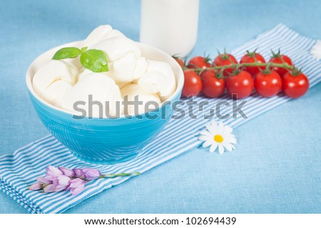 Fresh italian dairy products as mozzarella, ricotta and cherry tomatoes