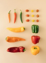 Fresh jucy vegetables. Fresh  paprika,chilli, fresh tomato various shapes and different species. red, green, orange. Healthy food. Healty cusine.  Minimal flat lay.