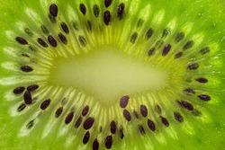 Fresh juicy kiwi slice macro close up. Kiwi fruit texture wallpaper