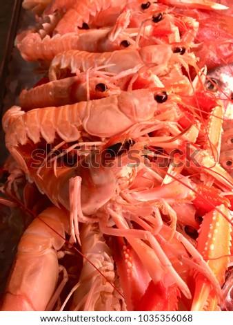 Fresh jumbo crayfish in the market showcase Stok fotoğraf ©