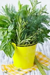 Fresh kitchen garden herbs in a decorative bucket.