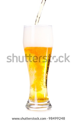 fresh lager beer is pouring into glass, cut out from white