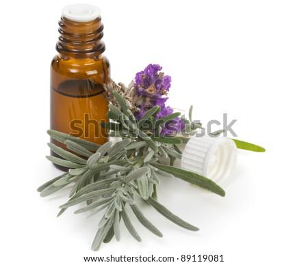 Fresh lavender and bottle of lavender oil on white - stock photo