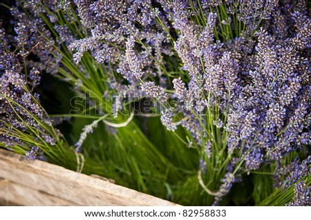Fresh lavender flowers in wooden box
