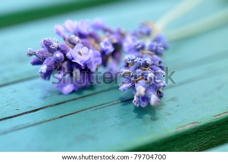 Fresh lavender on a wooden table
