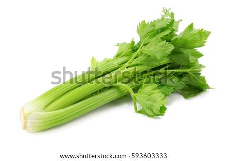 Fresh leaf celery isolated over a white background Stockfoto ©