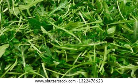 Fresh leaves of arugula as background. #1322478623
