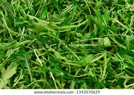 Fresh leaves of arugula as background. #1343070629