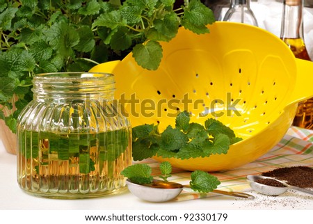 Fresh lemon balm herb (Melissa officinalis) with lemon shaped colander and ingredients for herbal tea and vinaigrette dressing.  Closeup with shallow dof.
