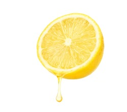 Fresh lemon  juice dripping isolated on white background. Clipping path.