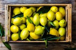Fresh lemon with leaves. Lemon tree. Box of yellow lemons with fresh lemon tree leaves on wooden background. Top view
