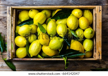 Fresh lemon with leaves. Lemon tree. Box of yellow lemons with fresh lemon tree leaves on wooden background. Top view #664142047