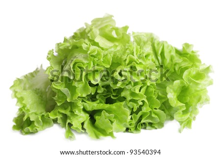 Fresh lettuce salad isolated on white background.