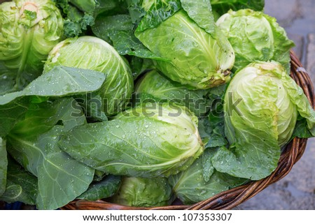 Fresh Lettuces for sale in ther market