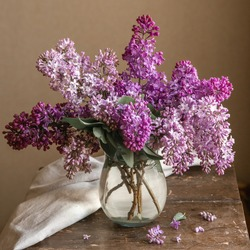 Fresh lilac bouquet in a transparent glass vase on a beige background in the interior. Springtime postcard concept in a pastel colors.