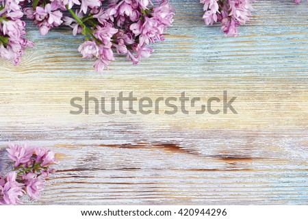 fresh lilac flowers on the...