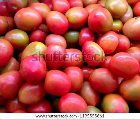Fresh Look of Tomatos #1195555861