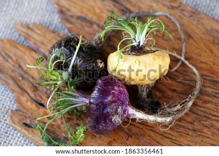 Fresh maca roots or Peruvian ginseng (lat. Lepidium meyenii) with maca products (maca powder) (Selective focus, Focus on maca roots on the front) Stock foto ©
