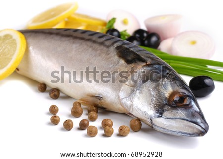 Fresh mackerel with olives and onions over white background
