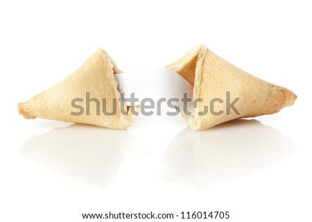 Fresh Made Fortune Cookie against a background