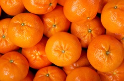 Fresh mandarin oranges fruit or tangerines, as background