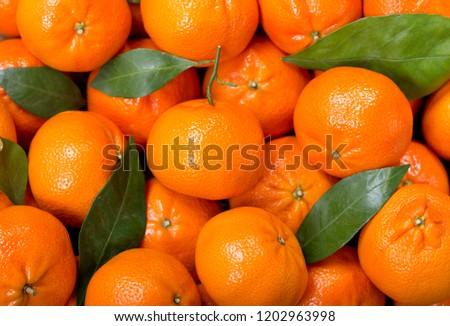 Fresh mandarin oranges fruit or tangerines with leaves,  as background ストックフォト ©